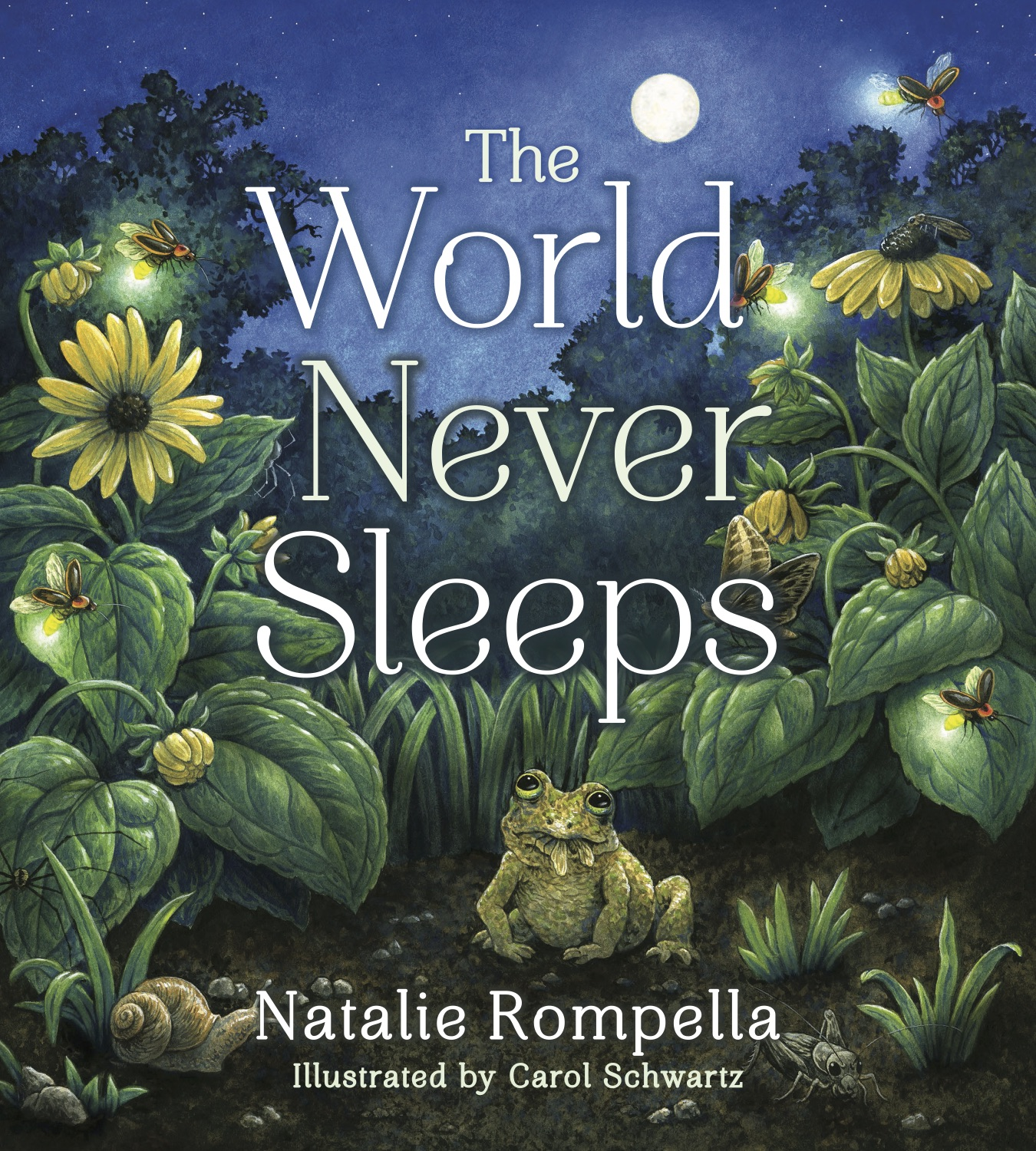 The World Never Sleeps By Natalie Rompella