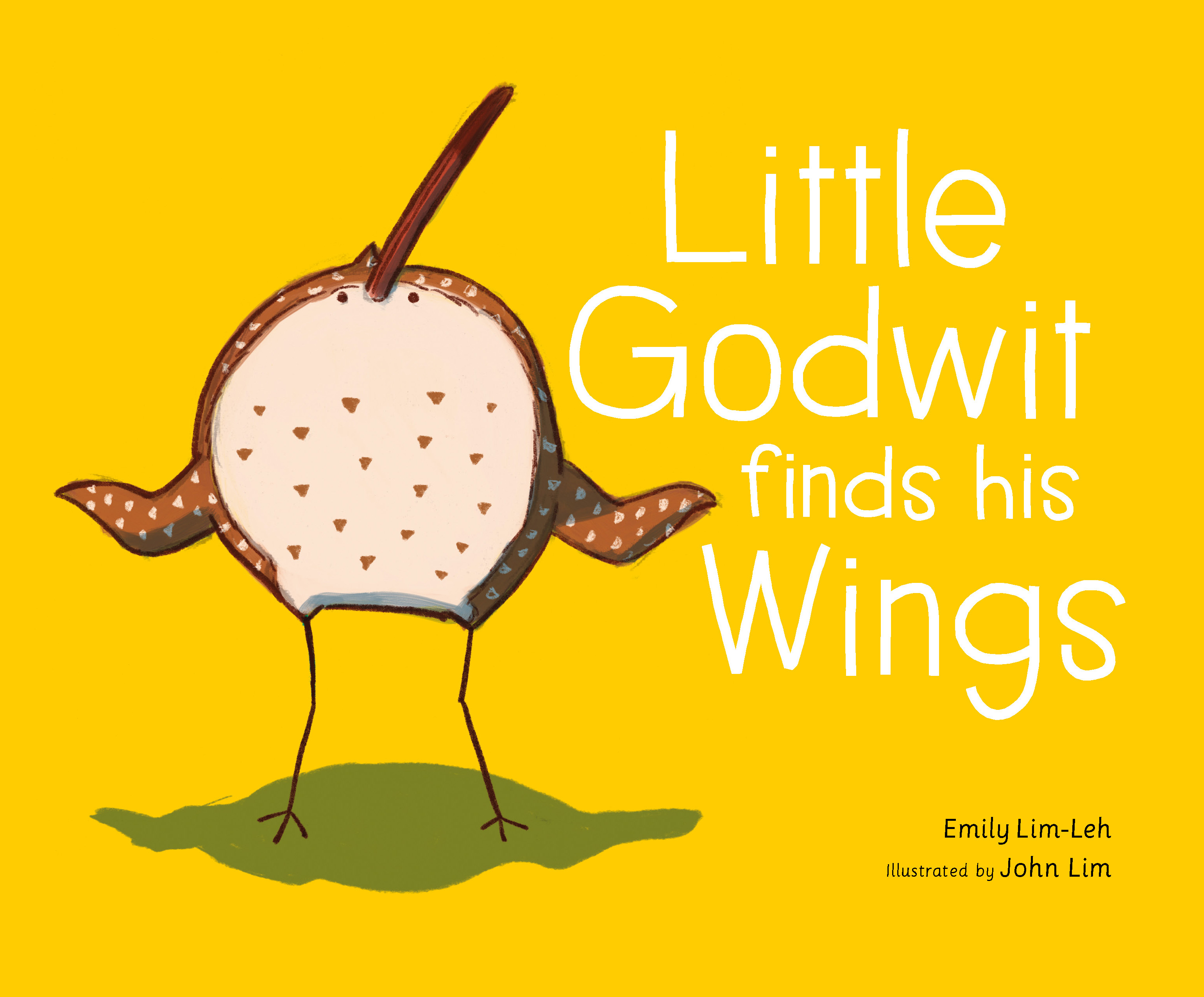 Little Godwit Finds His Wings By Emily Lim-Leh 03-01-18